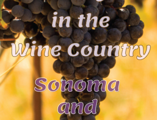 A day out in Napa and Sonoma Wine Country
