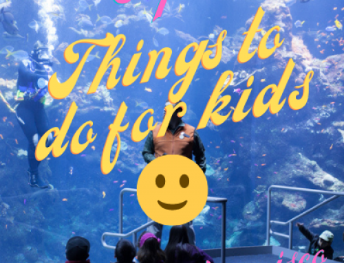 Top 10 Things To Do for Kids in San Francisco